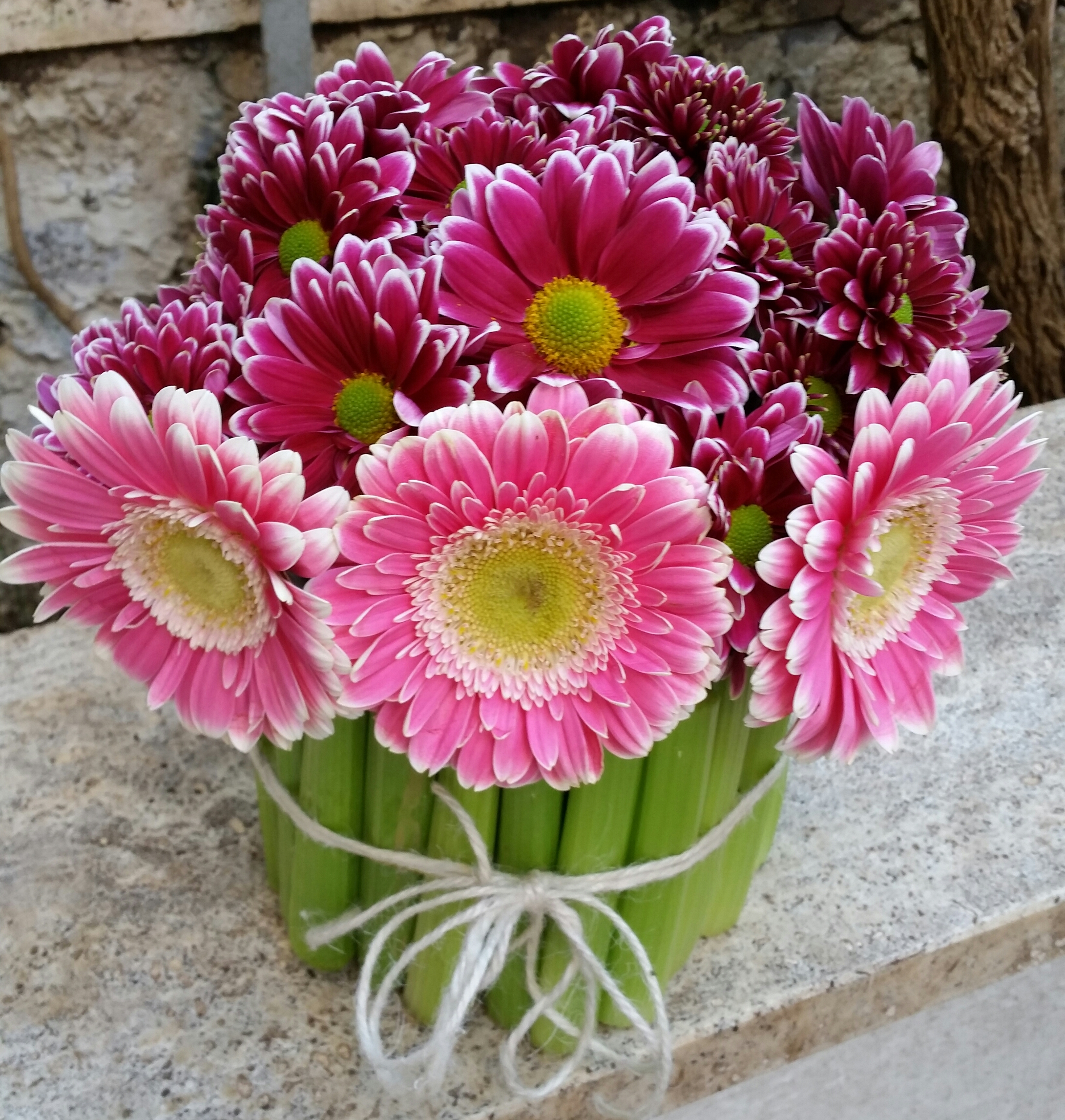 Conosciuto fiori | Family Life LP73